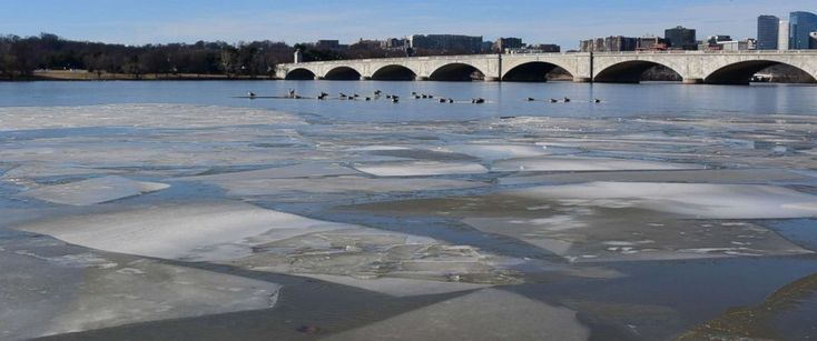 PHOTO: Birds rest on an ice patch on the Potomac River near the Memorial Bridge in Washington, DC January 20, 2018 as a winter storm heads across the upper midwest towards the Great lakes and New England.