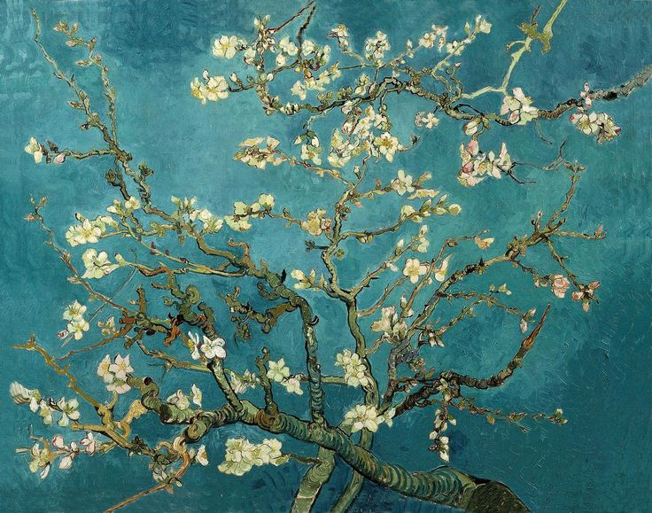 Van Gogh: Almond Blossoms, Vangogh, Vans, Almonds, Art, Vincent Van Gogh