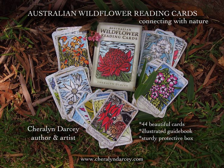 Australian Wildflower Reading Cards, Rockpool Publishing 2014 by Cheralyn Darcey (author & artist) available at all good bookstores throughout Australia, UK, USA and Canada.