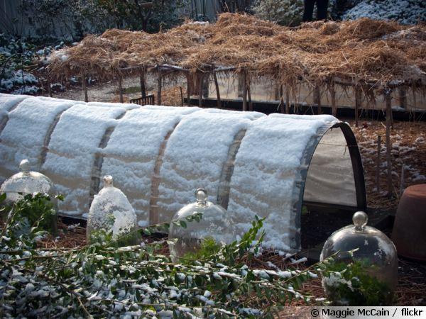 Que faire au potager en hiver ?