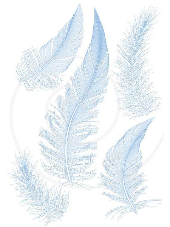 Blue bird feathers, clipart, clip art, illustration ...