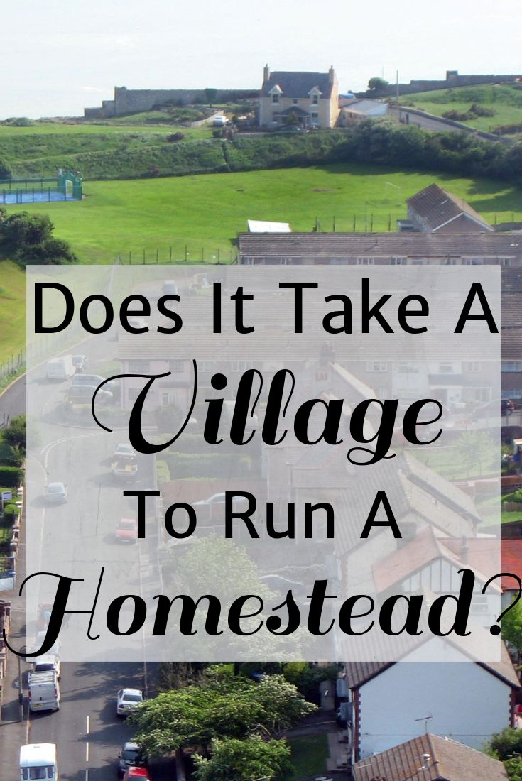 Does It Take a Village To Homestead? ~ Just Plain Marie  The question has been raised recently about whether or not a community is necessary for homesteading. That is, do homesteaders require constant financial and physical assistance from those around them? This is a loaded question and I hope that I can give a good answer.  The answer, after much thought is … Yes, but  …. well, no, that's not quite right. I mean .. No, but ….  I feel like the elephant trying to use the telephant right now.
