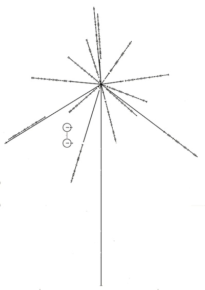 Carl Sagan's Pulsar Map    Relative position of the Sun to the center of the Galaxy and 14 pulsars with their periods denoted. The lengths of the lines show the relative distances of the pulsars to the Sun.    ..... (I'd love this as a tattoo on the side of my thigh. I'm a huge astrophysics nerd, and this is a gorgeous piece of geometry, physics and astronomy all rolled into one!)