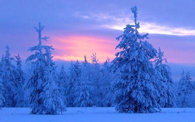 Laponia mágica es la región hogar de Papá Noel y además es la región más al norte de Finlandia. Descubre las mejores destinaciones de Laponia finlandesa, la verdad detrás del reno, nieve, hielo, etc.
