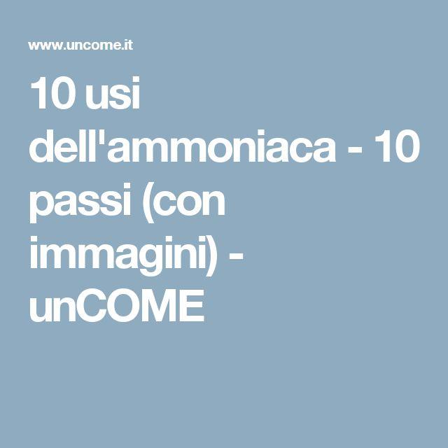 10 usi dell'ammoniaca - 10 passi (con immagini) - unCOME