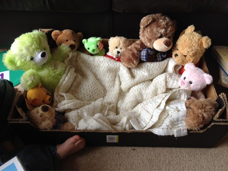 "Numbers week and a trip out to the @Sue_Ryder shop to buy bears for our ""ten in a bed"" box. #eyfs #EYTalking"