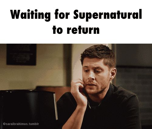 Waiting for SPN to return like...and my other shows that are in hiatus at the moment
