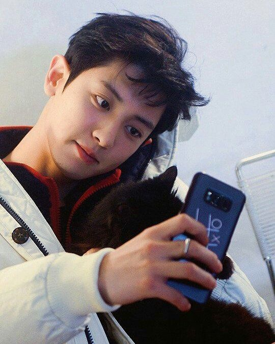 """947 Likes, 11 Comments - CHANBAEK IS LIFE (@chanyeol_baeky) on Instagram: """"【#PCY】 귀엽네 ...❤❤ . . © chanyeol pic . Vote for EXO!!! Link on Bio Stream 'StayWithMe' until 100…"""""""