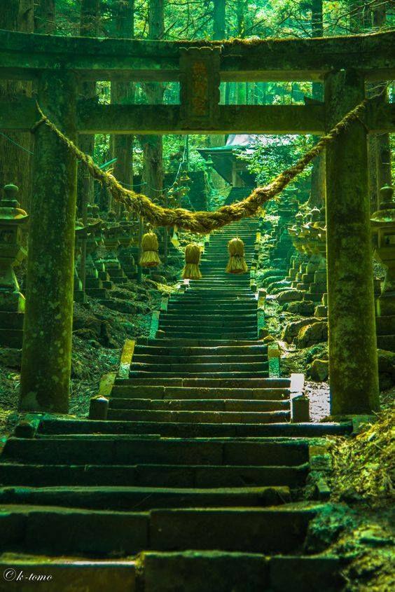 海外「この神々しさは何なんだ!」 日本の神社の異世界感が海外ネットで話題に - 【海外の反応】 パンドラの憂鬱 #日本