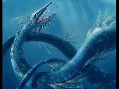 Гигантские морские монстры у побережья Новой Зеландии.