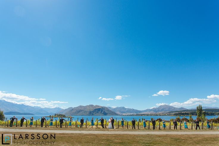Never too many bridesmaids. Wedding photography at Rippon.