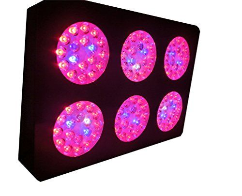 Rubility Led Grow light Bulb 324W Grow Light 108 pcs Bulbs for Flowering Plant Hydroponics System and Vegetables Review https://ledgrowlightplant.info/rubility-led-grow-light-bulb-324w-grow-light-108-pcs-bulbs-for-flowering-plant-hydroponics-system-and-vegetables-review/