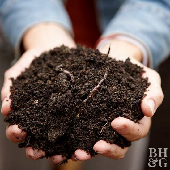 Topsoil is the top layer of the earth's surface. It is a key component to healthy lawns, flowers, plants and more. Learn if topsoil can be used in containers, where to buy it and much more with our topsoil 101 guide. #gardening #topsoil #soil