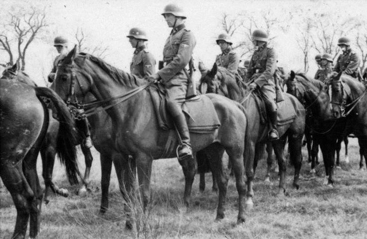 Lợi ích bất ngờ của ngựa trong chiến tranh thế giới thứ hai