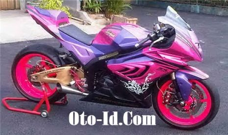 Kawasaki ninja 250r decals kawasaki ninja ninjas custom motorcycles - 296 Best Images About Motorcycles On Pinterest