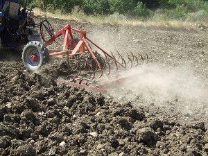 piana-monte-verna-agricoltore-fresa-terreno-cui-fuoriescono-tombe-romane