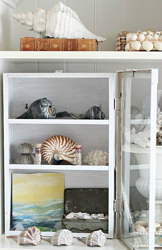 Best Seashell Decor Images On Pinterest Shells Beach And