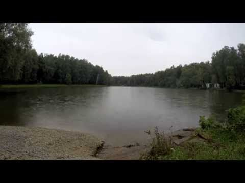 Time lapse лесной пруд Измайлово - YouTube