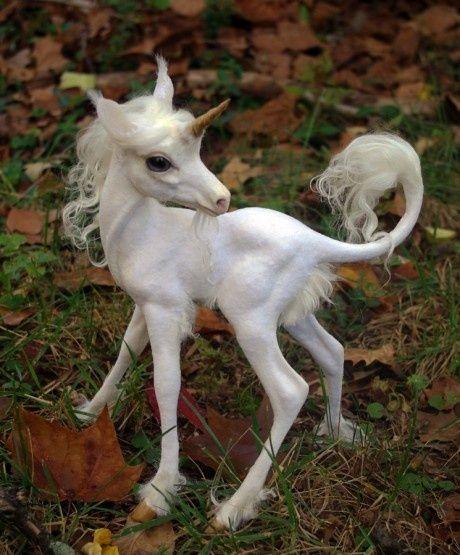 L�skig Baby Unicorn