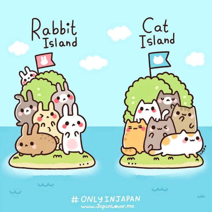 Only in Japan: Rabbit Island & Cat Island. - Life is fun and games, especially in Japan.