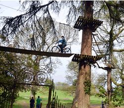 Be a daredevil at Zipit Forest Adventures in Roscommon!