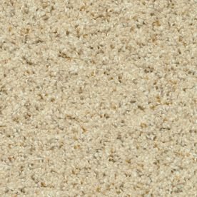 stainmaster day trip petprotect relax frieze carpet sample - Lowes Carpet Sale
