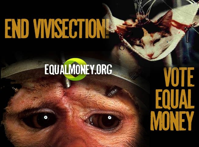 http://www.youtube.com/watch?v=AmMXHFMzJQw  ---  http://www.youtube.com/watch?v=Qe_Sm77Xl9g    (tags: equality, animal rights, capitalism, vivisection, abuse, torture, experiments, science, animals, activism)