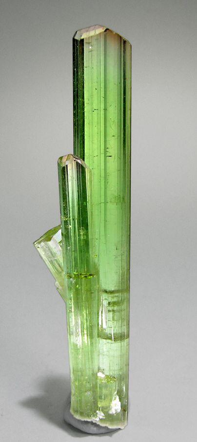 Elbaite from Paprok, Konar Afghanistan Specimen size: 5.9 × 1.5 × 1.1 cm