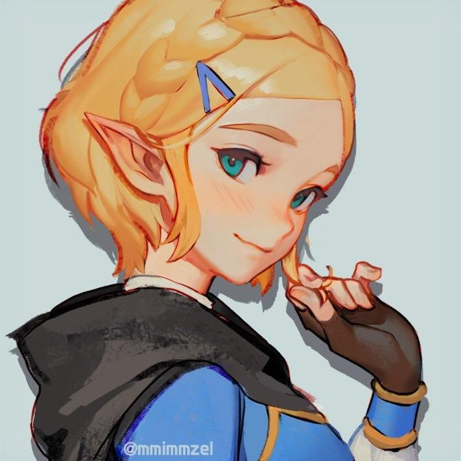 Zelda With Short Hair The Legend Of Zelda Breath Of The Wild Legend Of Zelda Legend Of Zelda Breath Zelda Art