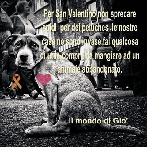 Chiesa di San Lorenzo: Per San Valentino fai un gesto d'amore!
