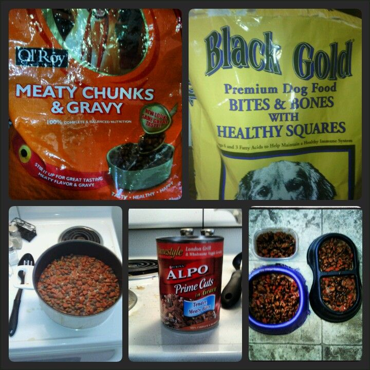 Made my puppies breakfast this morning. Meaty chunks ol Roy dog food has dehydrated gravy in the first few ingredients. So i mixed the ol roy with a little of their black gold dog food and added water on the stove to warm the gravy. I topped with canned meat chunks and then watched them devour it, all of that food in the picture!