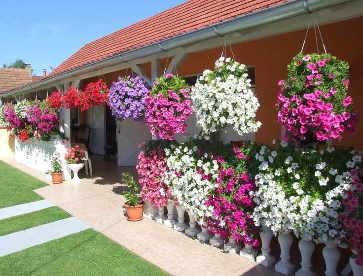 Top 10 Dream Homes with flowers | Luxury Home