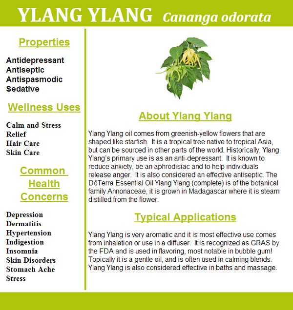ylang ylang - benefit and uses - hayleyhobson.com - health coach, essential oils expert - create your sexy and abundant life
