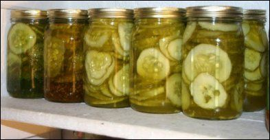Cucumber Pickles! Dill Pickles, Bread & Butter Pickles, Sweet Pickles.  Recipes and Canning instructions.