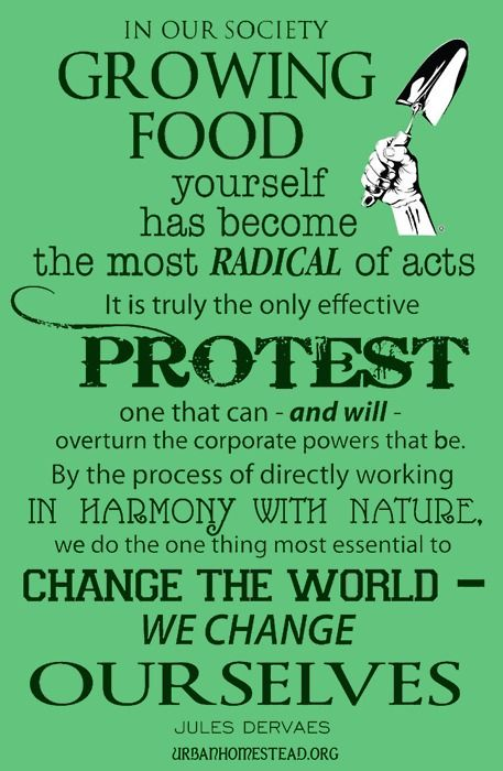 25 best protect tropical forests 5 images on pinterest queereed text in our society growing food yourself has become the most radical of acts it is truly the only effective protest one that can and fandeluxe Images