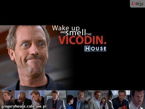 doktor house cytaty - Szukaj w Google