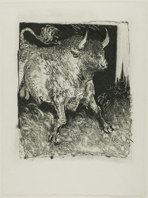 Pablo Picasso  The Spanish Bull, from Histoire naturelle, 1936, published May 26, 1942    Aquatint, sugar lift etching, and drypoint on ivory laid paper  265 x 223 mm