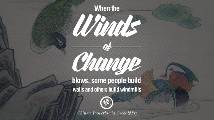 When the winds of change blows, some people build walls and others build windmills. 35 Ancient Chinese Proverbs and Quotes on Love, Life, Wisdom, Knowledge and Success