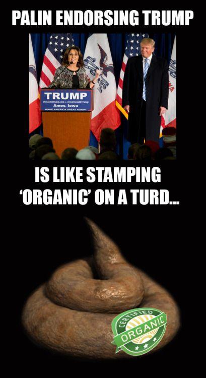 daily-political-humor:   Sarah Palin Endorsing...