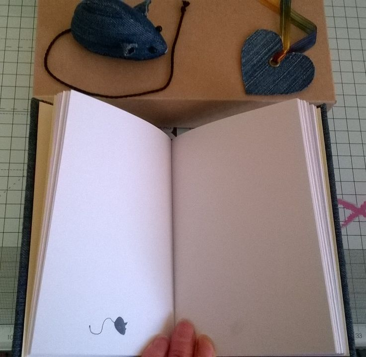 Mouse inside the book!