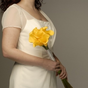 Yellow callas - too simple and desired