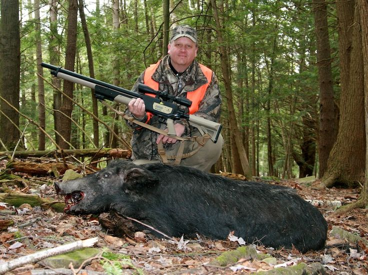Headshots Are Key To Airgun Hunting Success