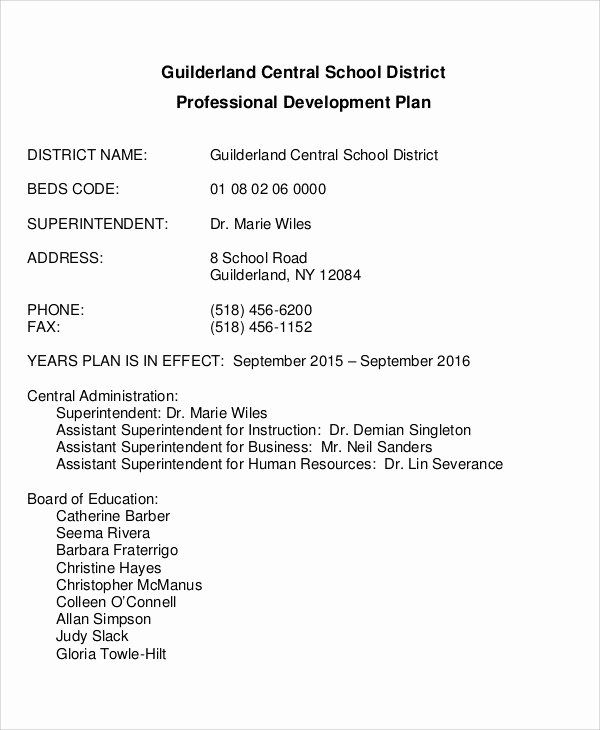 Sample Professional Development Plan Luxury Professional