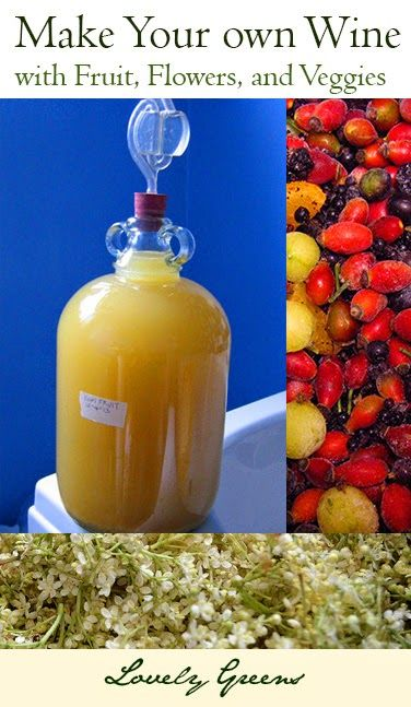Learn how to make your own homemade wine using fruit, flowers and veggies - Loads of recipe recommendations and instructions on how to do it yourself!