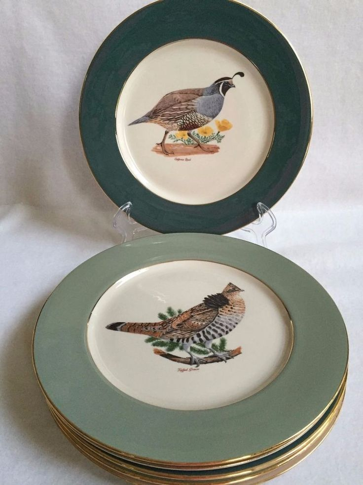 Set of 6 Game Bird Fine Translucent China Plates - Vincent Lippe Corporation