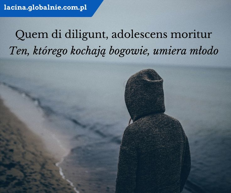 "Sentencja łacińska. Łacina: ""Quem di diligunt, adolescens moritur"". Polski: ""Ten, którego kochają bogowie, umiera młodo"". http://lacina.globalnie.com.pl/"