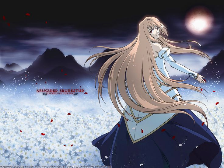 Shingetsutan Tsukihime ♥