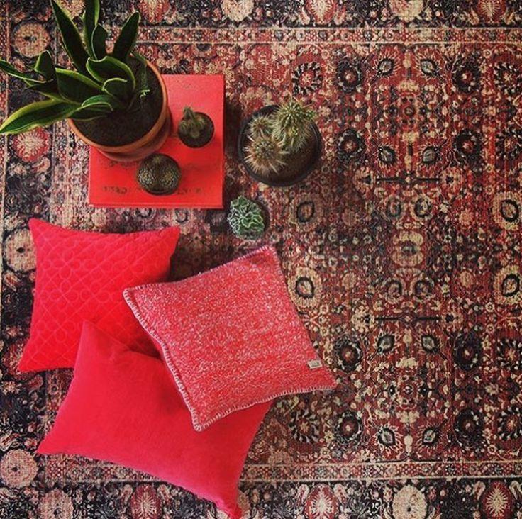 Pure wood - Ook deze hippe rode kussens zijn te vinden in onze showroom.