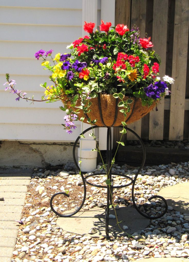 beautiful summer container