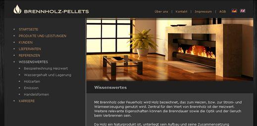 :: Project33 :: Вебдизайн портфолио :: Создание сайта #82 - эскиз и описание
